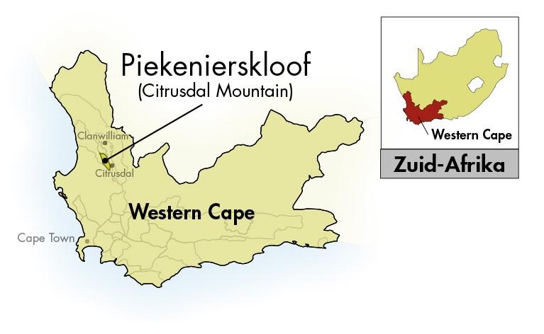 Nieuwe Trek Western-Cape Pinotage