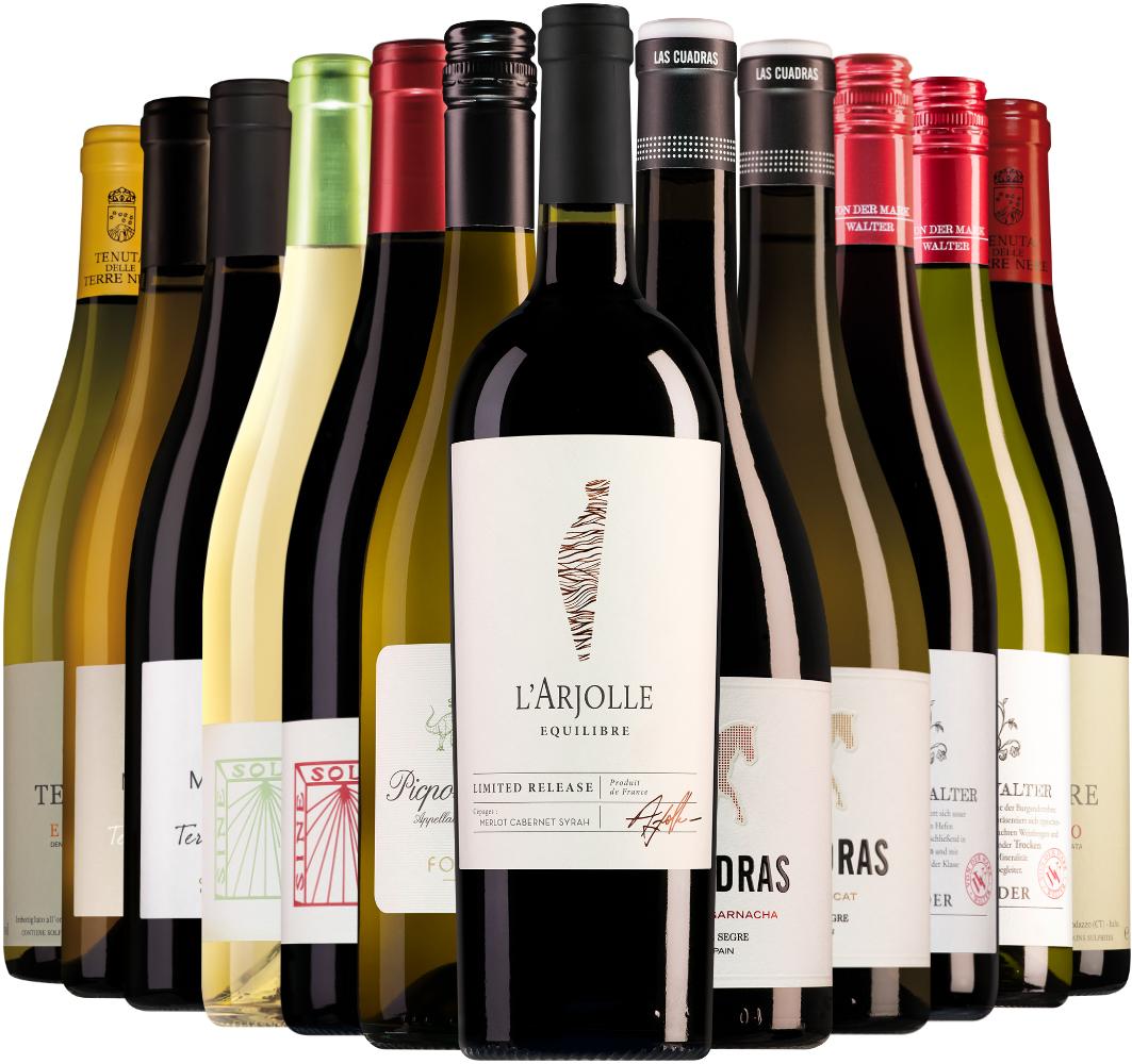 Wijnpakket Wijnbericht september (12 flessen)