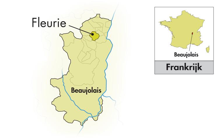 Domaine de Roche-Guillon Beaujolais Primeur